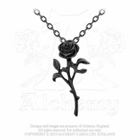The Romance of The Black Rose by Alchemy Gothic